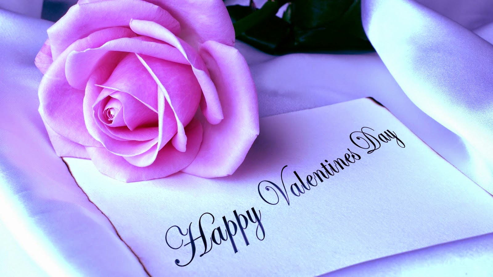 Valentine Happy Wallpaper Roses Pink 2015