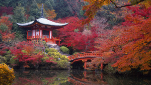 Japan Kyoto Wallpaper Widescreen