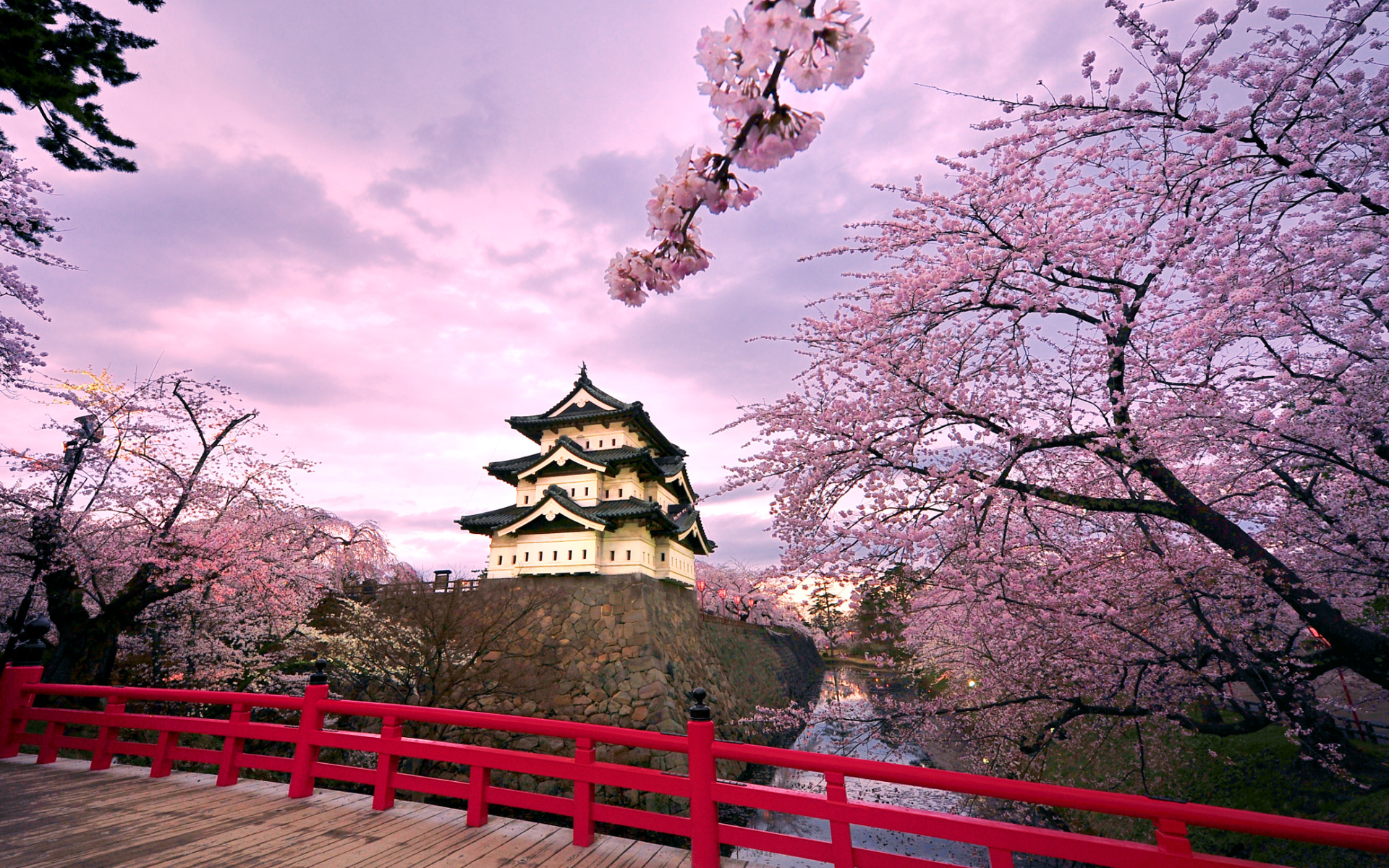 Sakura Japan Wallpaper High Quality
