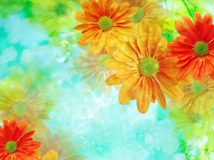 Awesome Flower Orange Wallpaper