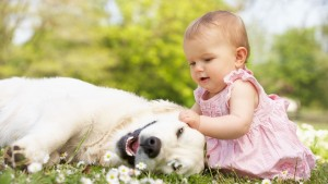 Baby And Dog Image Hd