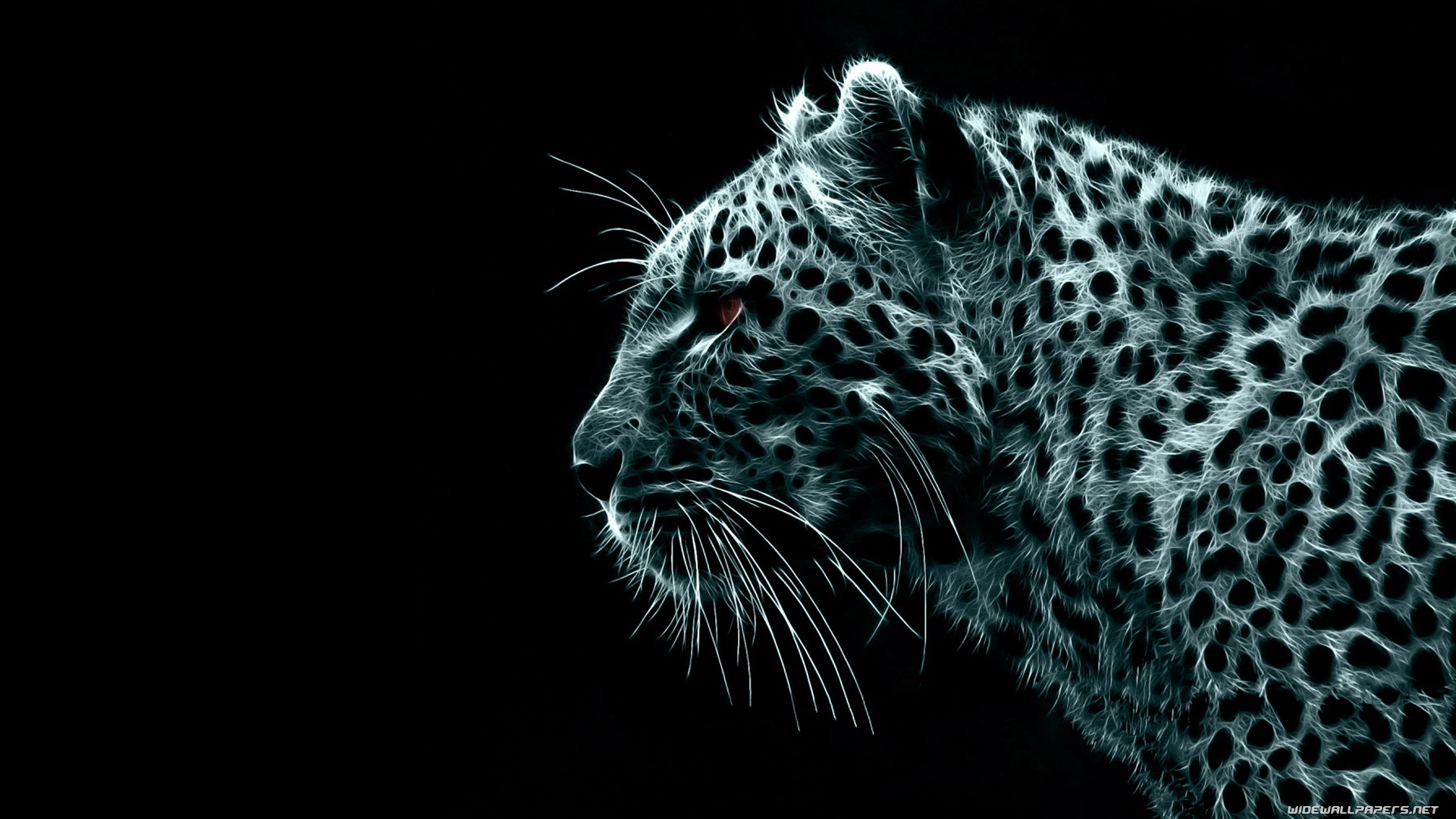 Black Jaguar Wallpapers 1920×1080