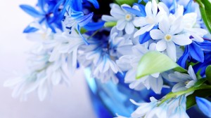 Blue Wallpaper Flower