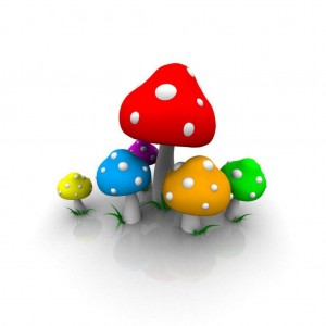 Color Mushroom Wallpaper