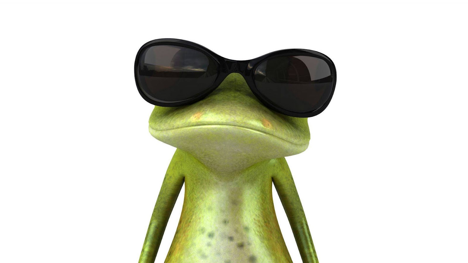 Frog Image Funny