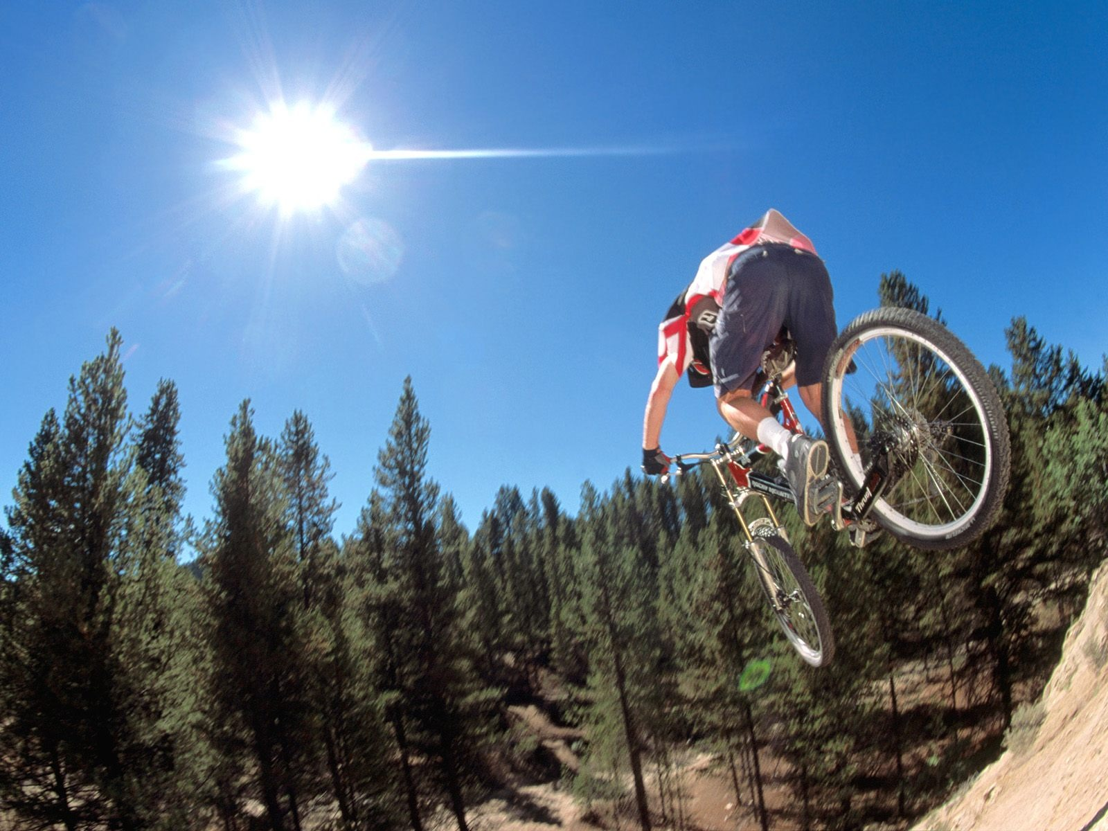 Mountain Bike Sports Downhill Wallpaper