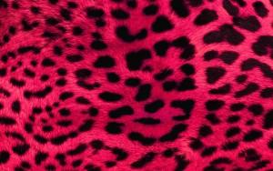 Pink Wallpaper Windows Download