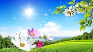 Scenery Flower Wallpaper