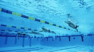 Swimming Olympiade Sports Wallpaper