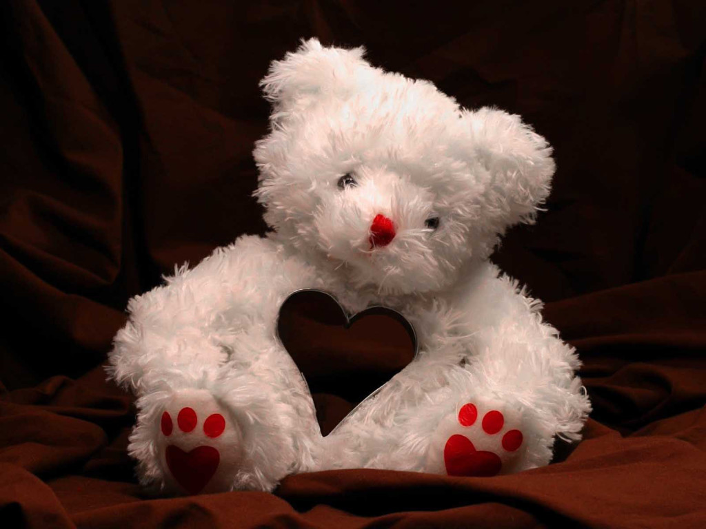 White Teddy Bear Wallpaper HD