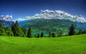 Nature Wallpaper And Themes
