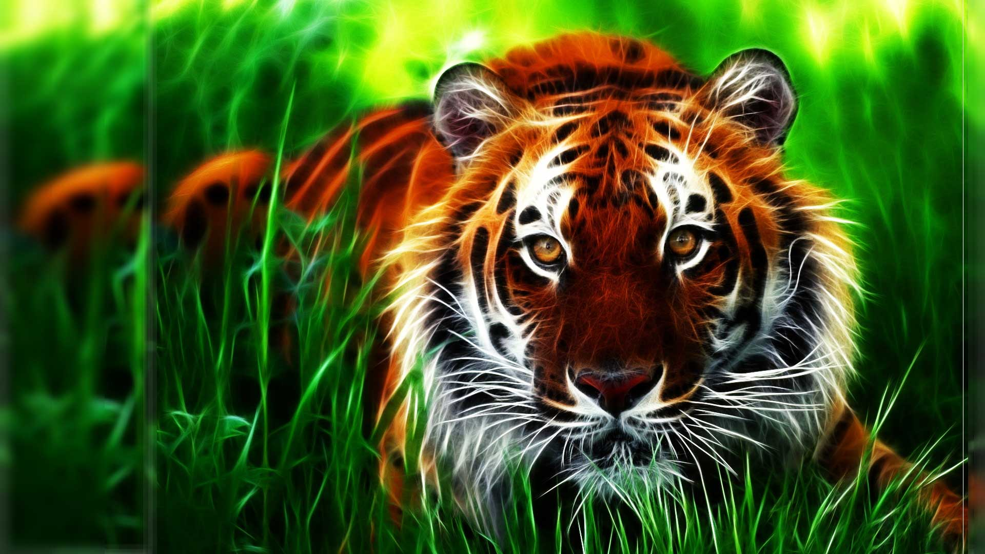 Tiger 3d Wallpaper