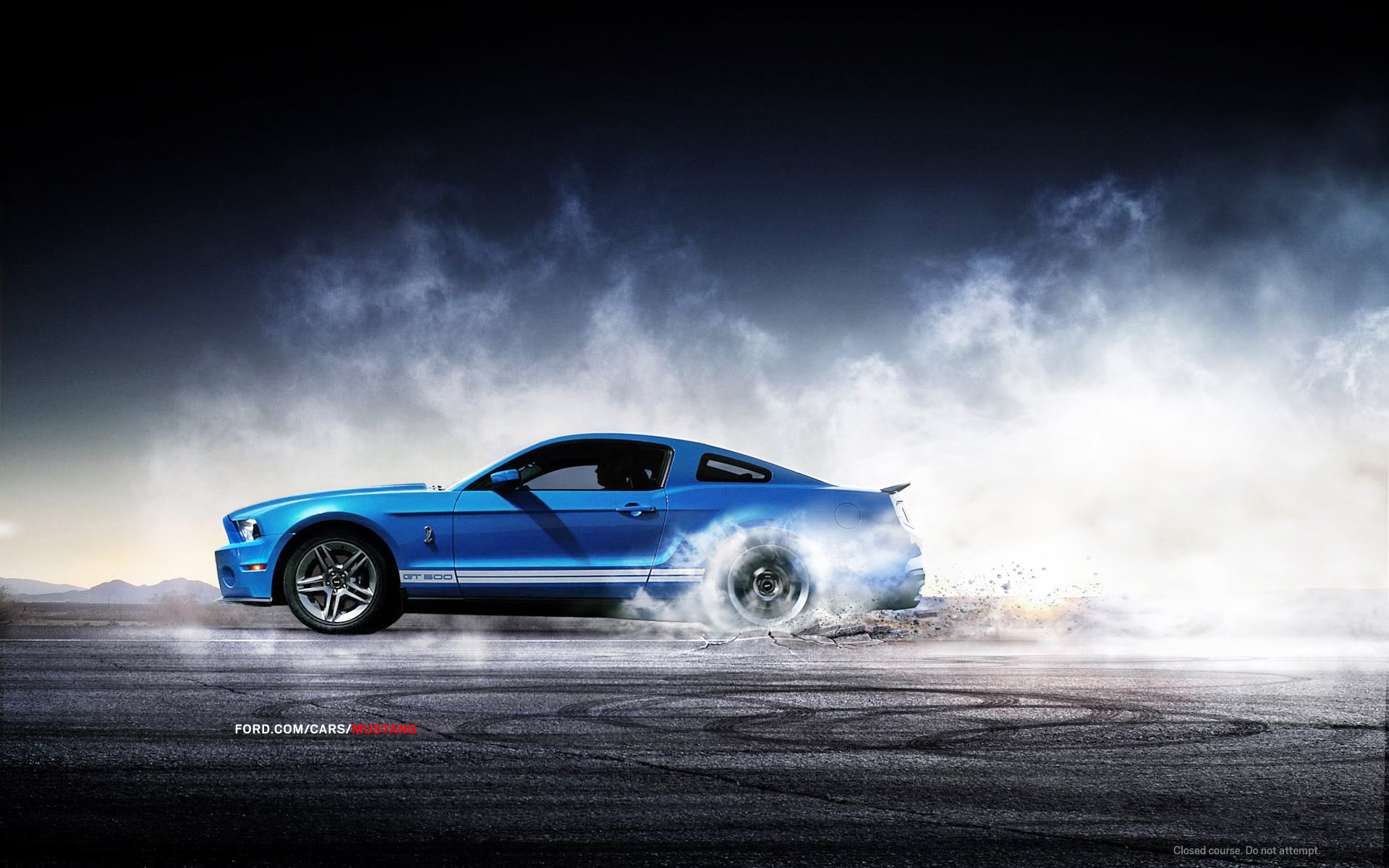 Ford Mustang Shelby Wallpaper HD 1218 Wallpaper  WallDiskPaper