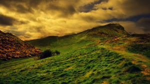 Landscape Wallpaper Background Android
