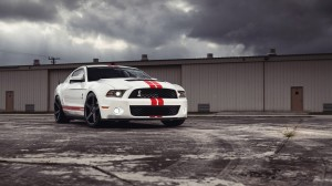 Shelby Wallpaper Free Download