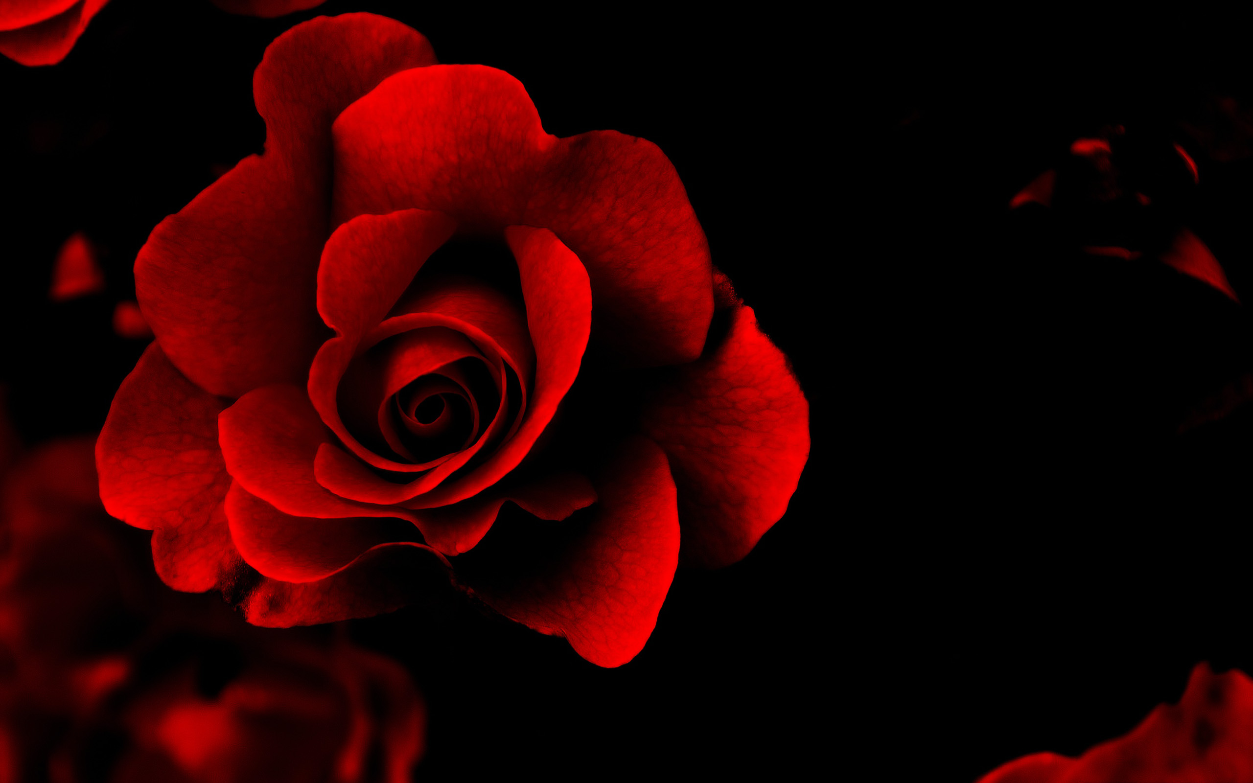 Love Wallpaper With Blood : Love Wallpapers Desktop HD #4038 Wallpaper WallDiskPaper