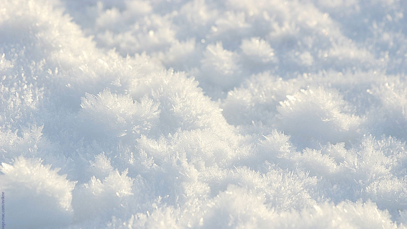 Nature Seasons Snow Winter Wallpaper