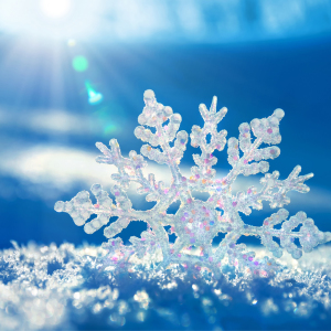 Snowflakes Wallpaper Android Phones