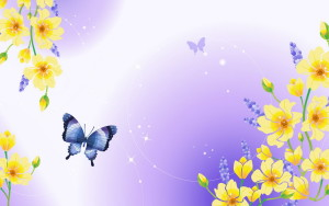 Clipart Butterfly Wallpapers