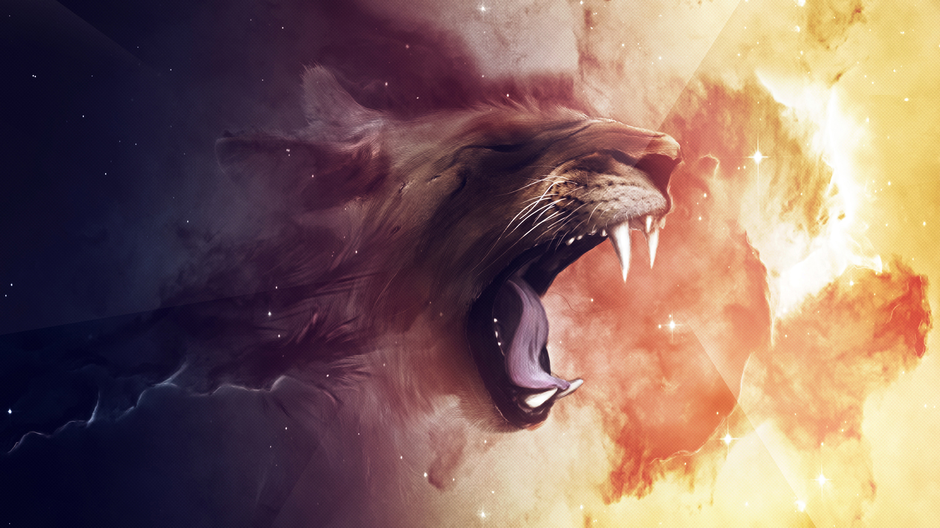 lion, wallpaper, cool #15922 wallpaper | walldiskpaper
