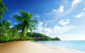 Tropical Beach Wallpaper HD